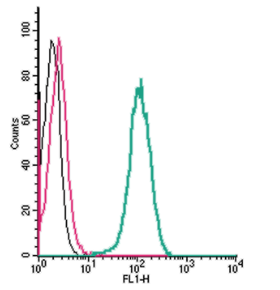 Cell surface detection of β3-Adrenergic Receptor by indirect flow cytometry in live intact human THP-1 monocytic leukemia cells:
