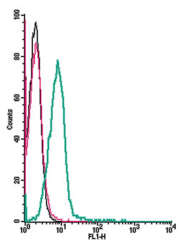 Cell surface detection ofOrai1receptor αby indirect flow cytometry in liveintactmouse TK-1T-celllymphomacells: