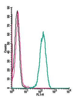 Cell surface detection of CB2 receptor by indirect flow cytometry in live intact human THP-1 monocytic leukemia cells: