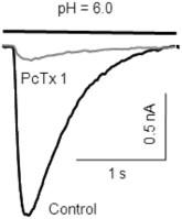 Psalmotoxin-1