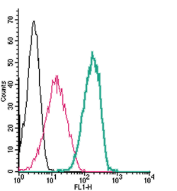 Cell surface detection of Neuroplastin by indirect flow cytometry in live intact human  THP-1 monocytic leukemia cells: