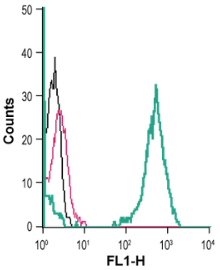 Cell surface detection of Kir2.1 in live intact human THP-1 monocytic leukemia cells: