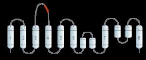 Anti-Human ASCT2/SLC1A5 (extracellular) Antibody