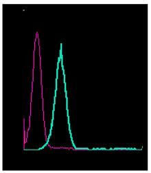 Anti-µ-Opioid Receptor/OPRM1 (extracellular)-FITC Antibody