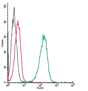Cell surface detection of β2-Adrenergic Receptor by direct flow cytometry in live intact human THP-1 monocytic leukemia cells: