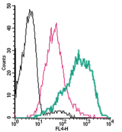 Cell surface detection ofPAR4by direct flow cytometry in live intact human MEG-01 megakaryocytic cells: