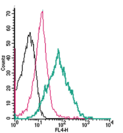 Cell surface detection ofPAR4by direct flow cytometry in live intact mouse P815 mast cells: