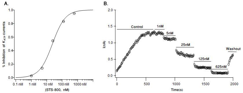 Alomone LabsSpTx-1 inhibits Kir6.2/SUR1 channels stably expressed inHEK-293 cells.