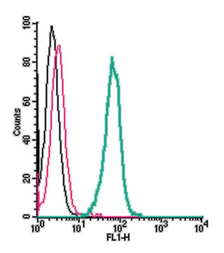 Cell surface detection of Neogenin by indirect flow cytometry in live intact human THP-1 monocytic leukemia cell line: